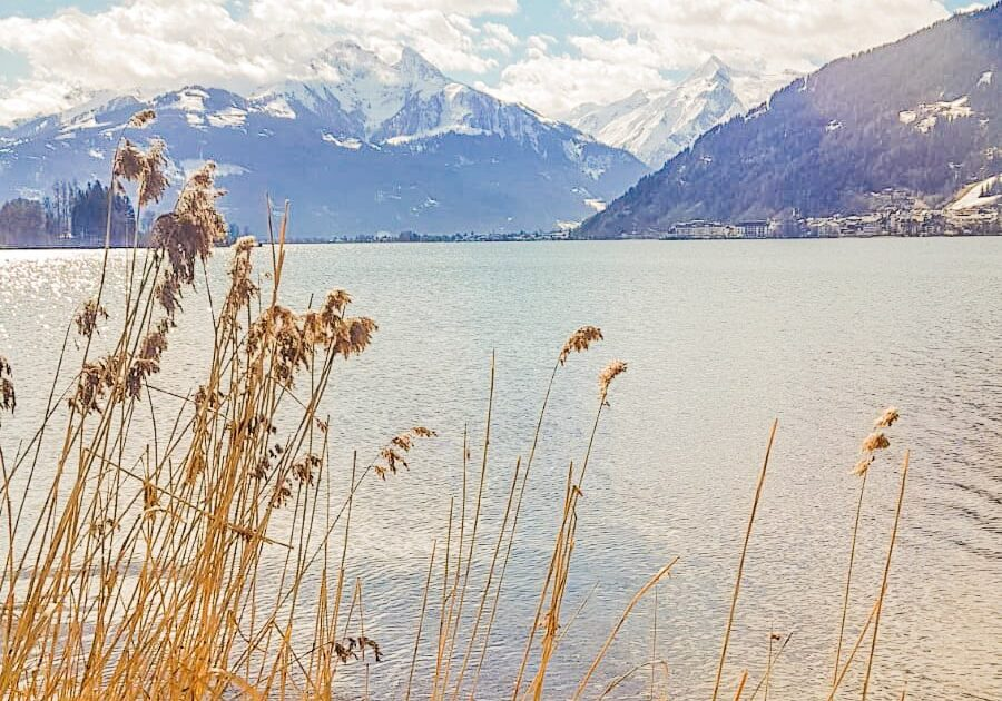 summer in Zell am See - Lake