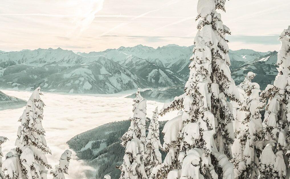 perfect winter week - Powder