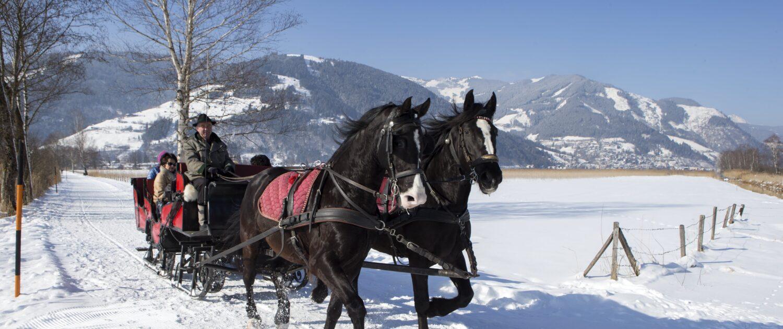 Pferdeschlittenfahrt in Zell am See-Kaprun