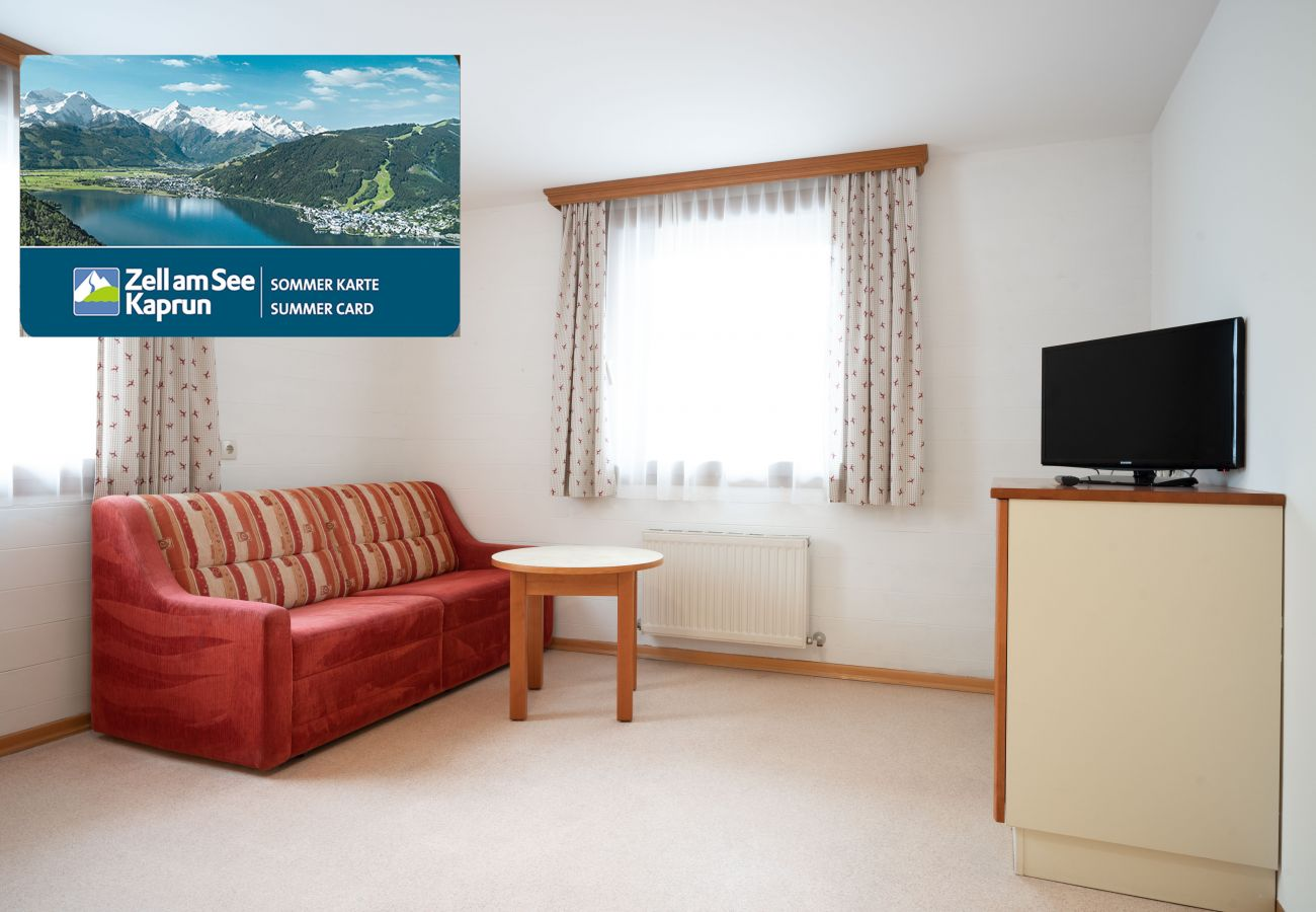 Apartment in Zell am See - Seilergasse Lake view 6
