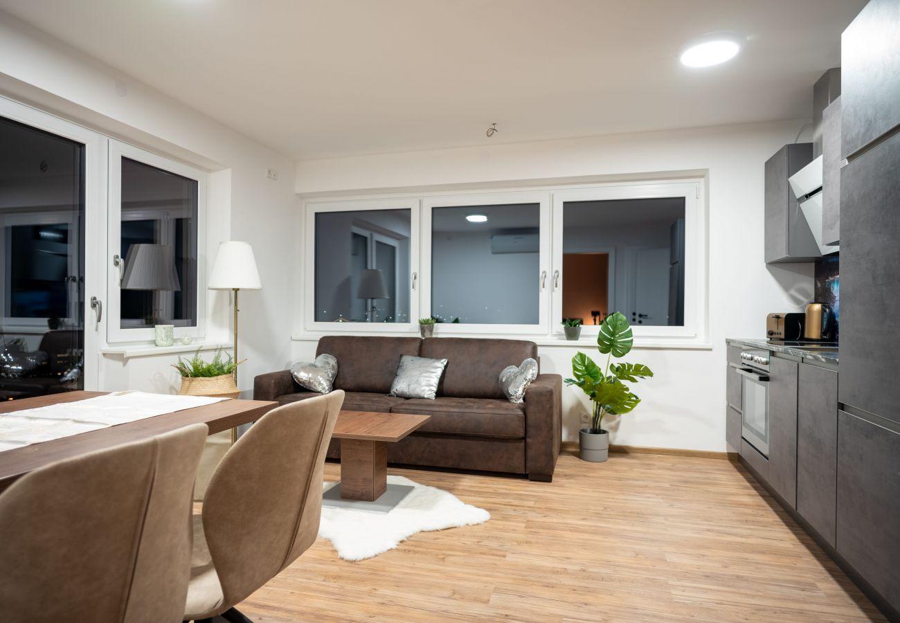 Modern apartment mit a beautiful panorama in Kaprun   Amelies Mountain View
