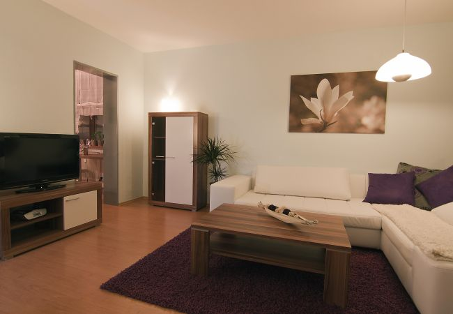 Ferienwohnung in Zell am See - Alpz Apartment 2 - Spacious holiday home
