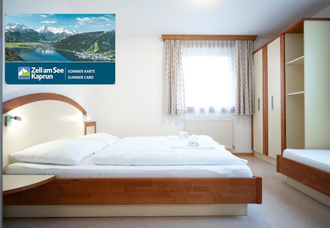 Ferienwohnung in Zell am See - Seilergasse big terrace 1