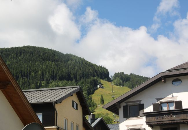 Ferienwohnung in Zell am See - Seilergasse mountain view 5